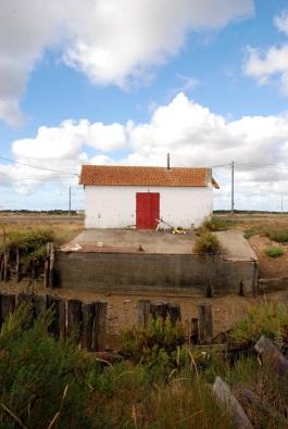 14 L'ile d'Oléron photographie Version DADA