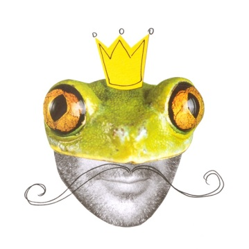 31 Collage grenouille